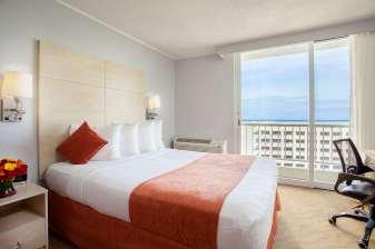 Condado Palm rooms.jpg